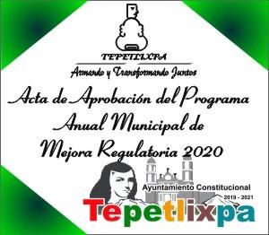 ActaCabildo2020